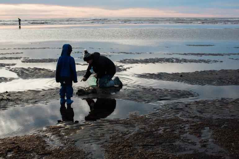 Best Pacific Northwest Clam Chowder